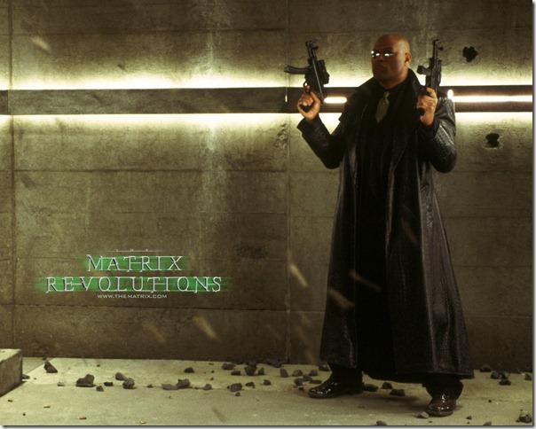 Matrix Revolutions (7)